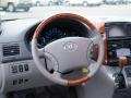 Toyota Sienna XLE AWD Slate Metallic photo #23
