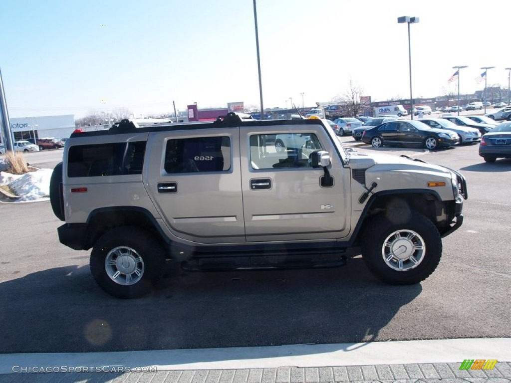 2003 H2 SUV - Pewter Metallic / Wheat photo #6