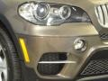 BMW X5 xDrive 50i Sparkling Bronze Metallic photo #2