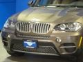 BMW X5 xDrive 50i Sparkling Bronze Metallic photo #5